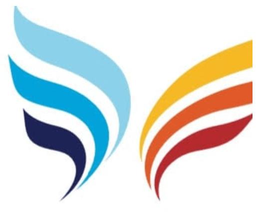 לוגו כנפיים חברת אפיק
